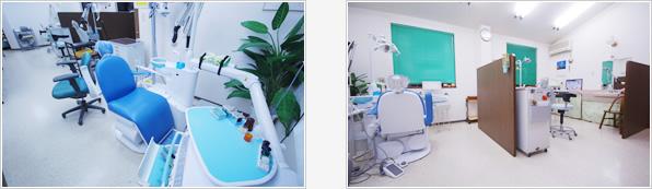 診療室はお隣が気にならないように仕切ってあります。フクロウは各スペースにいます。